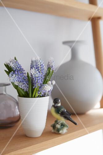 Purple and white grape hyacinths in ceramic beaker