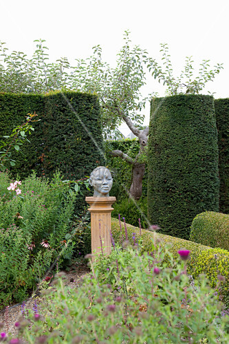 Michaelmas daisies, bust on plinth and clipped hedges in garden
