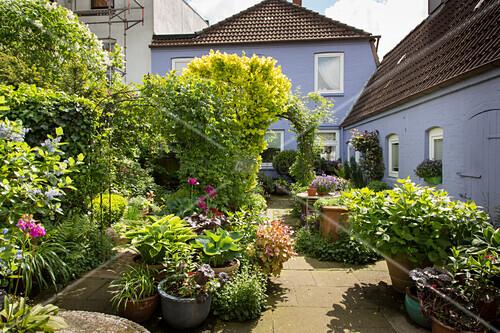 Container garden in courtyard