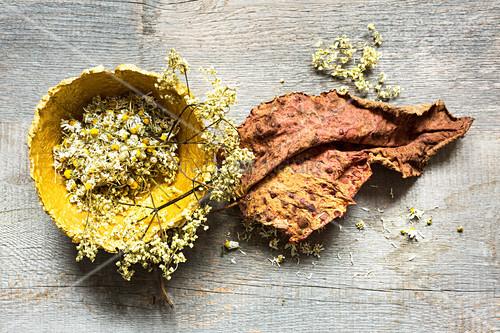 Getrocknete Holunder- und Kamillenblüten in einer Schale aus Pappmaché und getrocknetes Rhabarberblatt