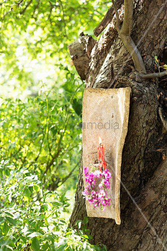 Candle sconce made from old roof tile decorated with wreath of sweet peas hung on apple tree in garden