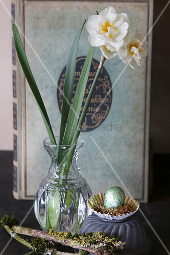 Narcissus in vintage vase and mossy branch in front of old book