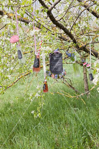 Limonadenflaschen und Menütafel am Apfelbaum hängend
