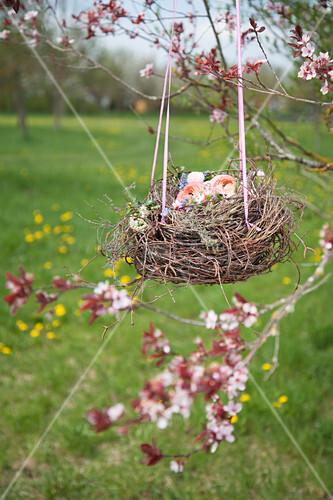 Blütennest aus Birkenzweigen am Apfelbaum hängend
