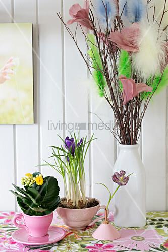 Kalanchoe und Krokus in Tassen und Palmkätzchen mit Federdeko in Vase