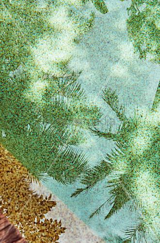 Palmen spiegeln sich im Pool