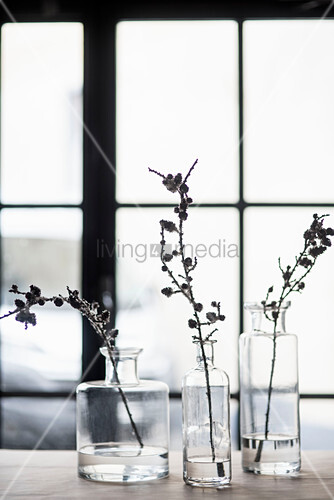 Twigs in old glass bottles in front of lattice window