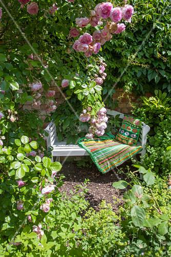 Romantischer Sitzplatz mit Gartenbank und Rosen
