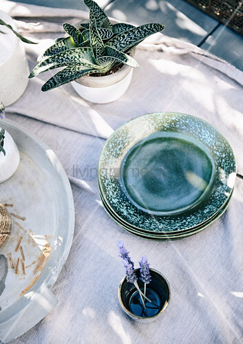 Gedeckter Tisch mit grünen Tellern und Topfpflanze im Garten