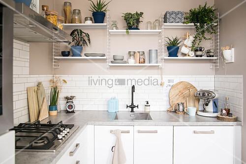 Einbauküche über Eck, Regale mit Küchenutensilien und Zimmerpflanzen an Wand in Beige