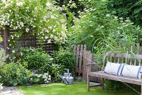 Cushions on garden bench in idyllic summer garden
