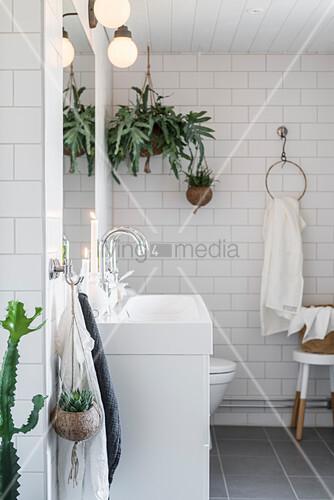Zimmerpflanzen im weißen Badezimmer