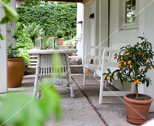 Orangenbäumchen und weiße Outdoormöbel auf Veranda