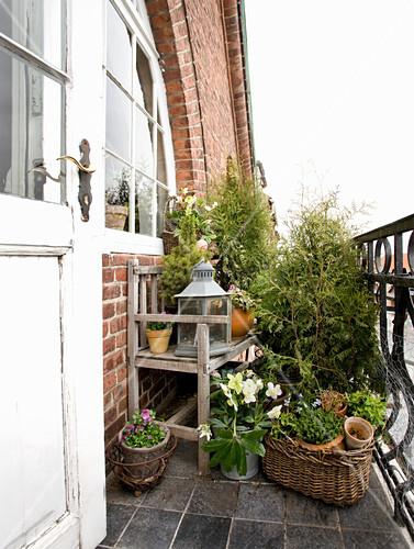 Holzbank, Laterne und Topfpflanzen auf Balkon