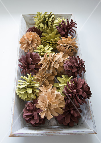 Pine cones painted brown, beige and pale green on wooden tray