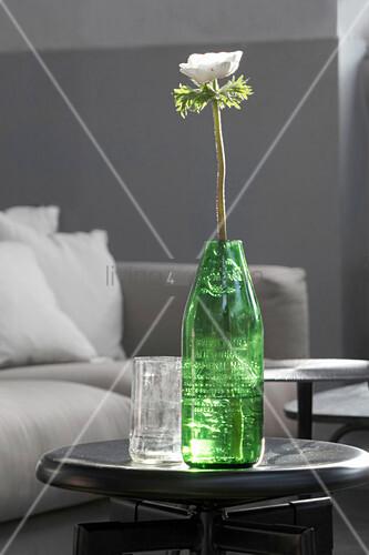 weiße Anemone in einer abgeschnittenen Flasche als Vase
