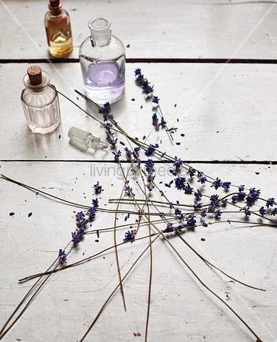 Dried lavender and small bottles
