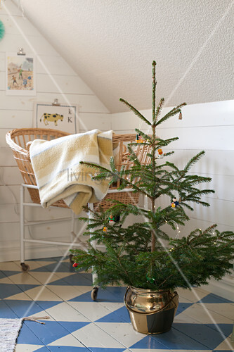 Small Christmas tree and crib in attic room with blue-and-white chequered wooden floor