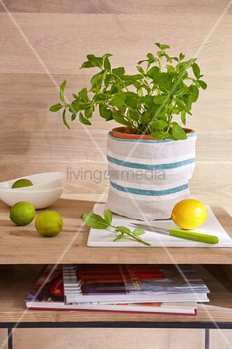 DIY-Stofftasche aus Leinen für Kräutertopf