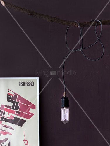 Pendant lamp wrapped around branch against purple wall
