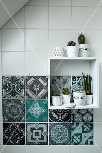 Cacti on square shelf module on wall with patterned tiles
