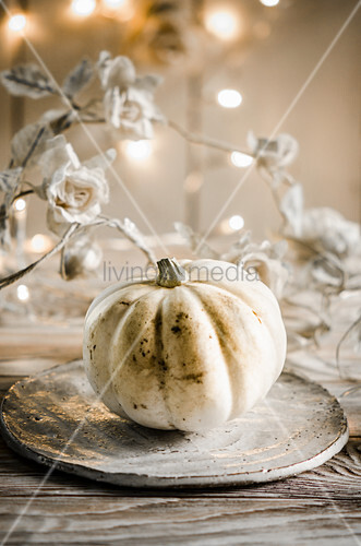 A still life with white pumpkin