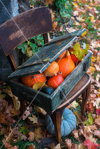 Pumpkins in a wooden box