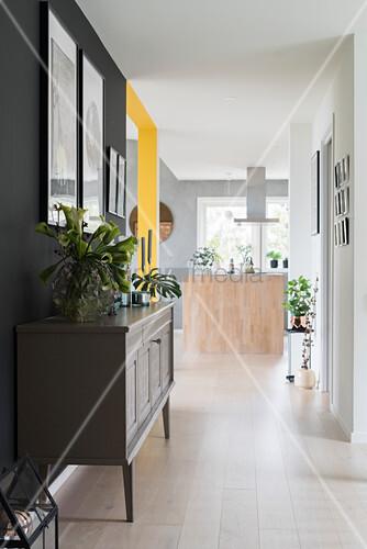 Houseplants on sideboard in hallway area of open-plan interior