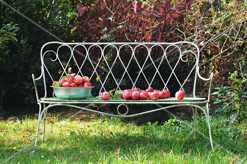 A garden bench with a bowl of red apples