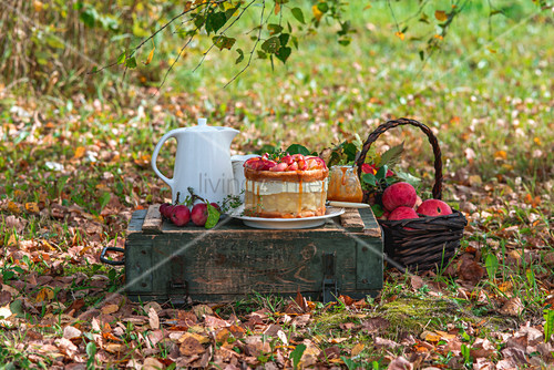 Apple jelly cake in autumn garden