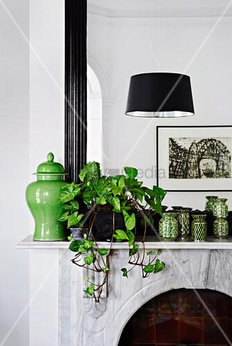 Grüne Vasen und Zimmerpflanze auf Kaminsims