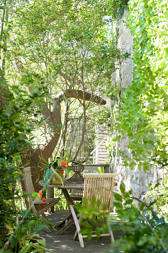 Summer seating area in wild garden