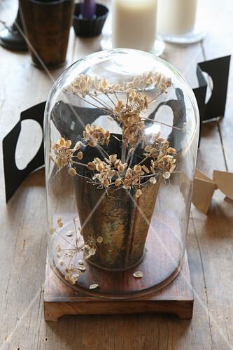 Trockenblume im Becher unter einer Glasglocke