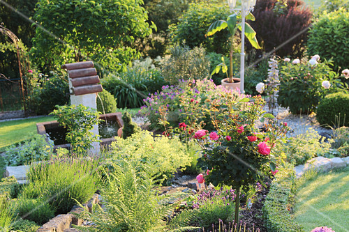 Garden with stem rose, lavender, lady's mantle, fern and fountain