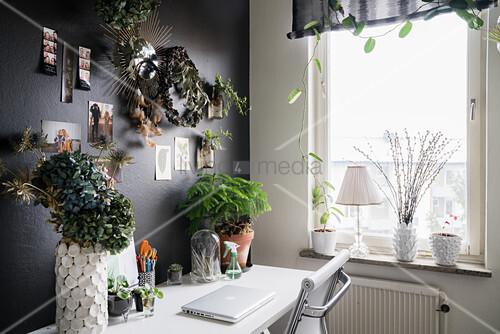 Schreibtisch an schwarzer Wand mit Pflanzen