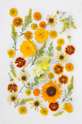 Tableau of yellow, orange and red flowers