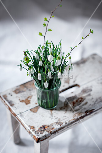 Posy of snowdrops in vase on battered stool