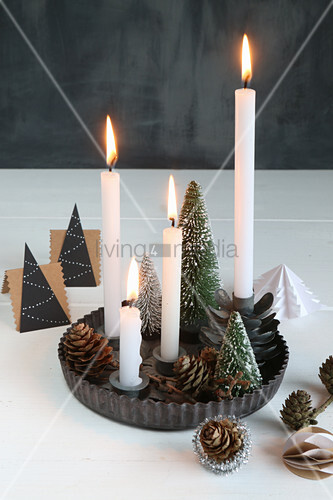 Advent wreath made from miniature Christmas trees in metal flan tin