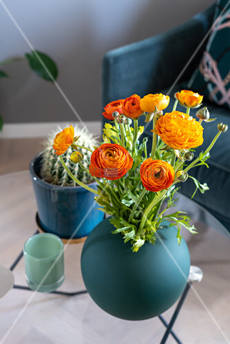Orangefarbene Ranunkeln in petrolfarbener Vase