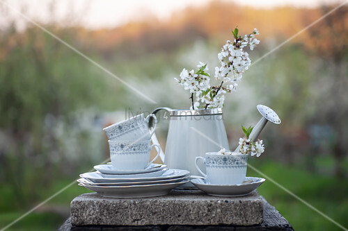 Cups, saucers, small watering can and fruit blossom