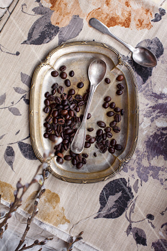 Coffee beans and spoon on vintage metal plate