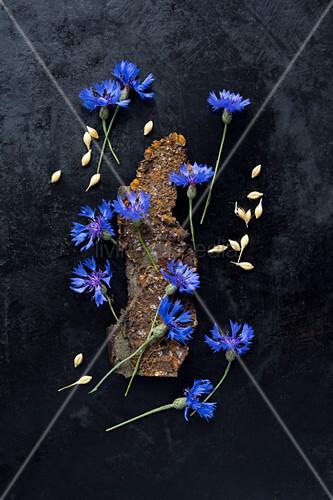 Legebild aus Kornblumen und Gerste auf dunklem Untergrund