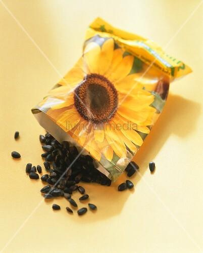 Sonnenblumensamen fallen aus der Tüte