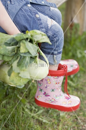 Child sitting on garden bench with freshly picked kohlrabi