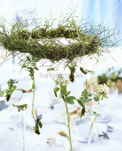 Forget-me-nots & flowering twigs hanging on wreath