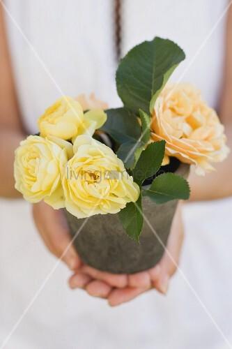Frau hält gelbe Rosen im Blumentopf