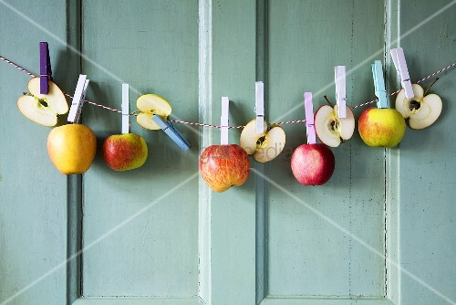 Apples hanging on a washing line