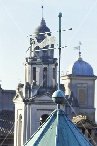 Weather vane with a fish on the top of a tower and view of a church