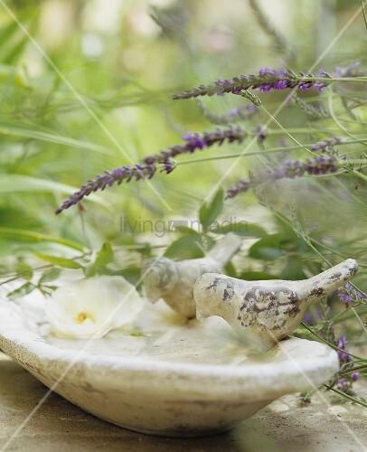 A bird bath